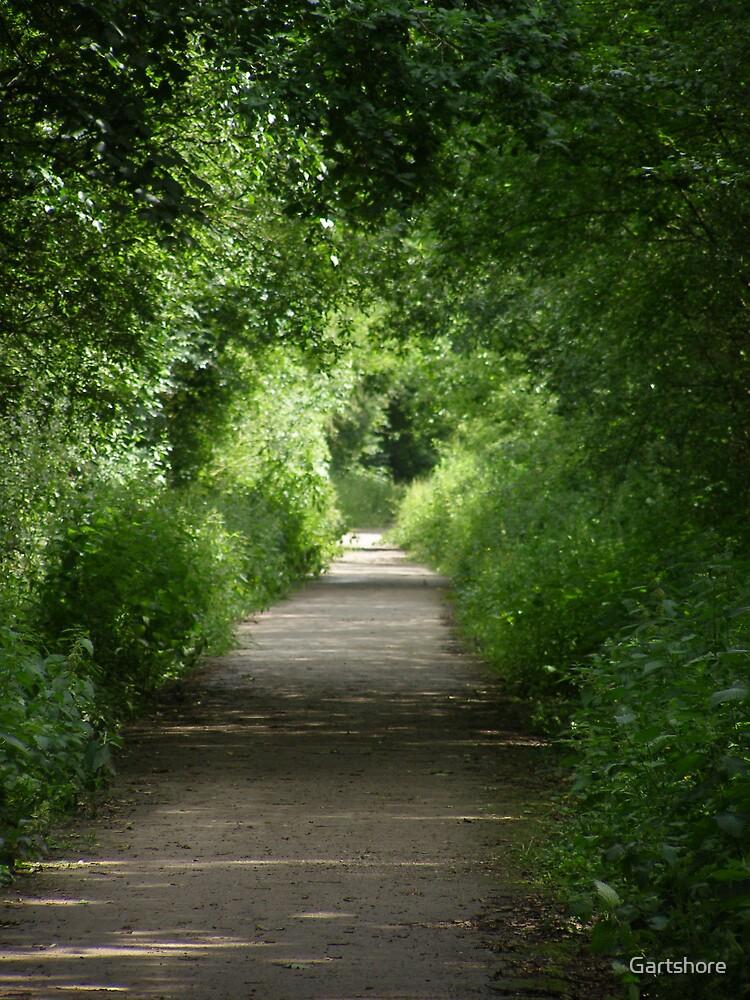 The long walk by Gartshore