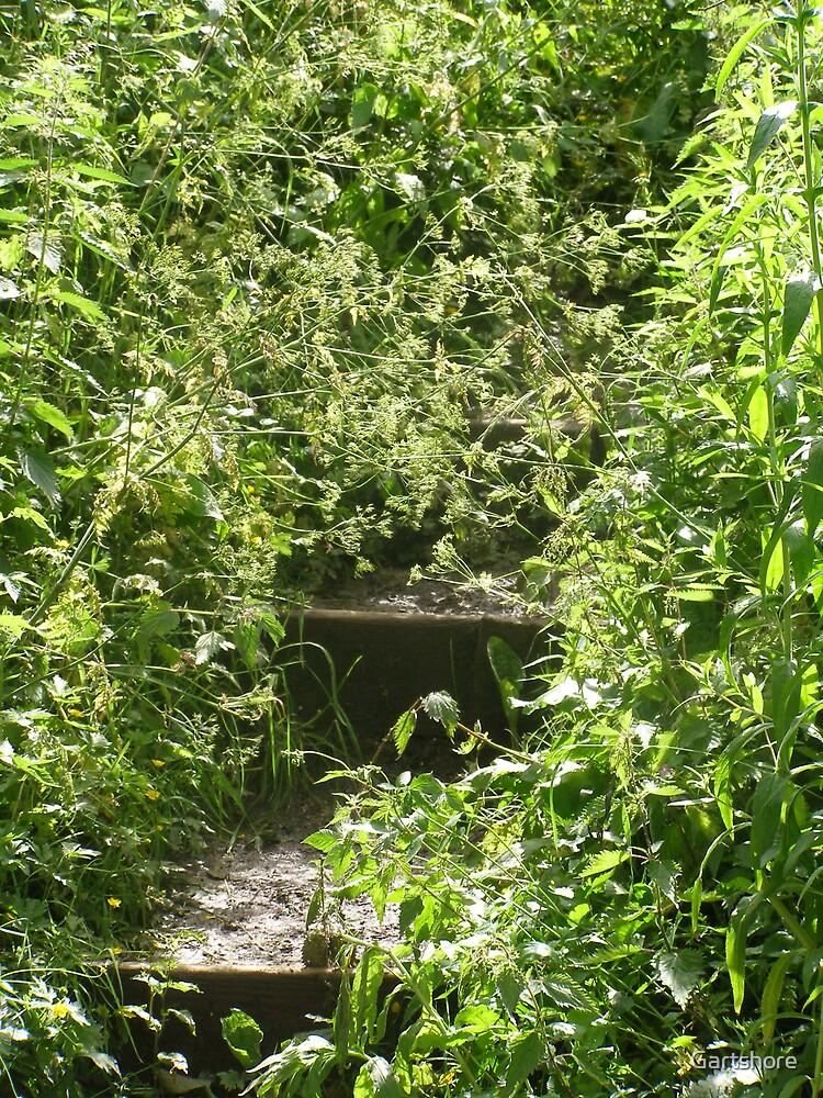 stairway to..? by Gartshore