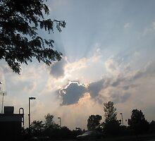sun rays by nedward