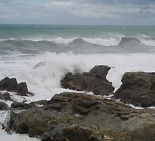 West Coast Shoreline NZ by Dr McClintock