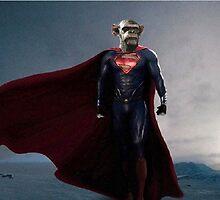 super monkey by bridger94