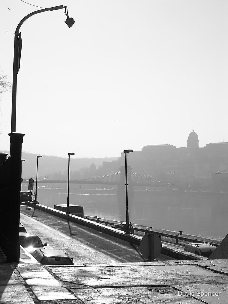 Danube by David Spencer