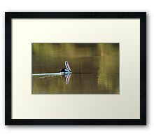 Drifting Along, Diamantina River,Qld Framed Print