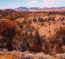 Beautiful Hills by DVJPhotography