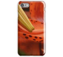 Nature's Curves iPhone Case/Skin