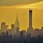 Misty afternoon in New York City by Alberto  DeJesus
