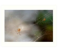 Mrs Spider Art Print