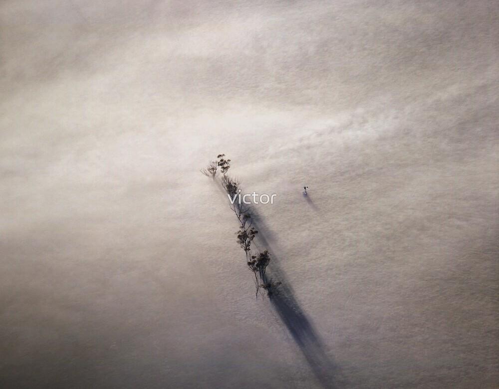 summer fog by victor