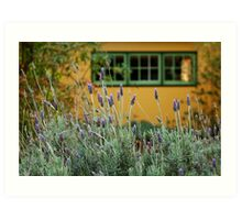 Lavender Cottage Art Print