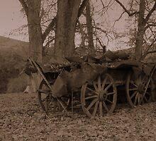 Wagon 1 by tonyherridge