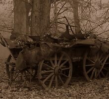 Wagon 2 by tonyherridge