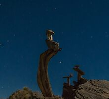Midnight mid-hike by JPNation