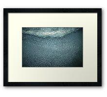 waterbird flock Framed Print