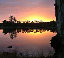 Sunrise on the Murray River SA by bombamermaid