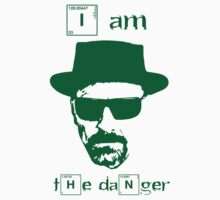 Breaking Bad - I am the danger by rlaunchbury