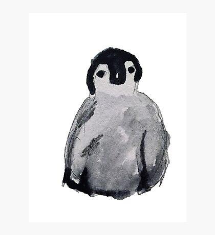 Baby Penguin - Watercolor  Photographic Print