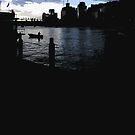 darling harbour dusk by Yuval Fogelson