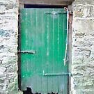 The Green Door by Shulie1