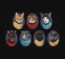 Star Trekitties by Jenny Parks