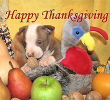 Thanksgiving (prints & cards w/words - all other items w/no words) by Ginny York