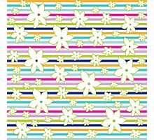 Floral Stripes Photographic Print