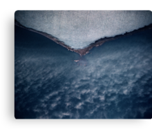 frost fog Canvas Print