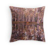 Sheet Water - Grampians - Victoria Throw Pillow