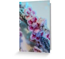 Cherry Blossoms Crystallized  Greeting Card