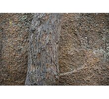 Things of Stone & Wood Photographic Print