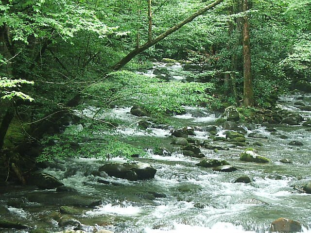 Gatlinburg, TN by dawn2799