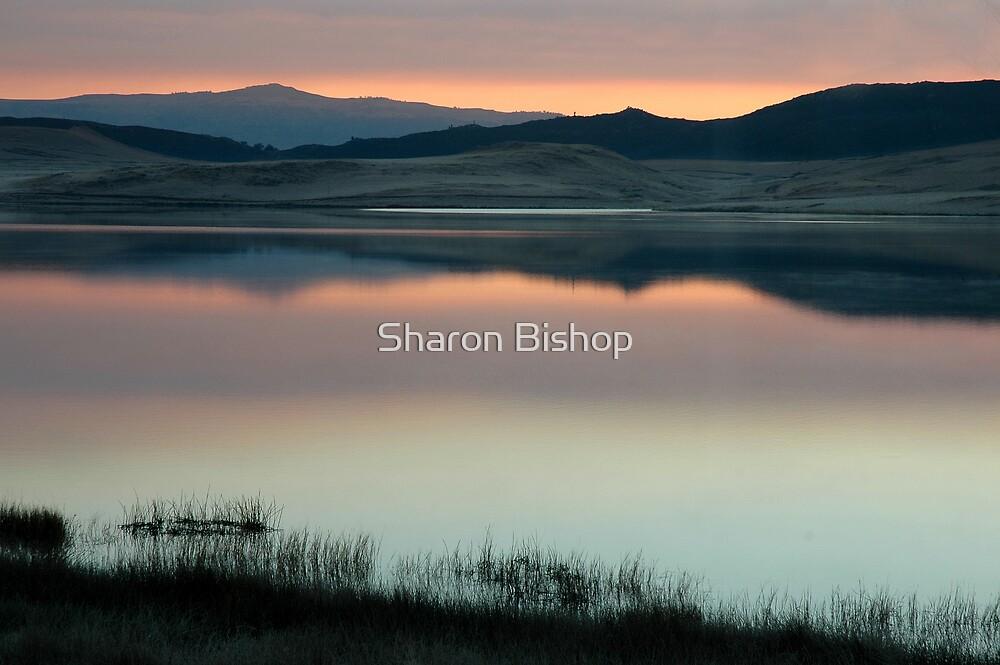 Pastel landscape  by Sharon Bishop