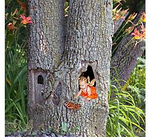Tree House Photographic Print