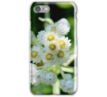 Pearly Everlasting iPhone Case/Skin