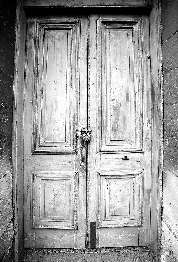 Doors by Neil