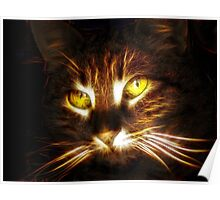 Kitty cat glowing eyes fractal artwork Poster