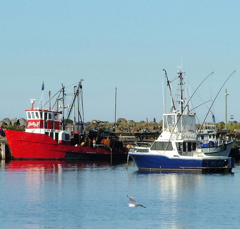 Ulladulla Harbour by Lynn