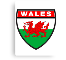 Wales Flag and Shield Canvas Print