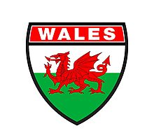 Wales Flag and Shield Photographic Print