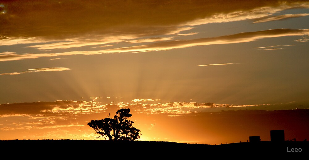 Last Rays - Nairne - Adelaide Hills by Leeo