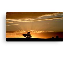Last Rays - Nairne - Adelaide Hills Canvas Print