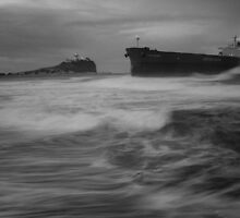 Pasha Bulker  by Mark Snelson