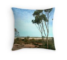 Receding Waterline Throw Pillow