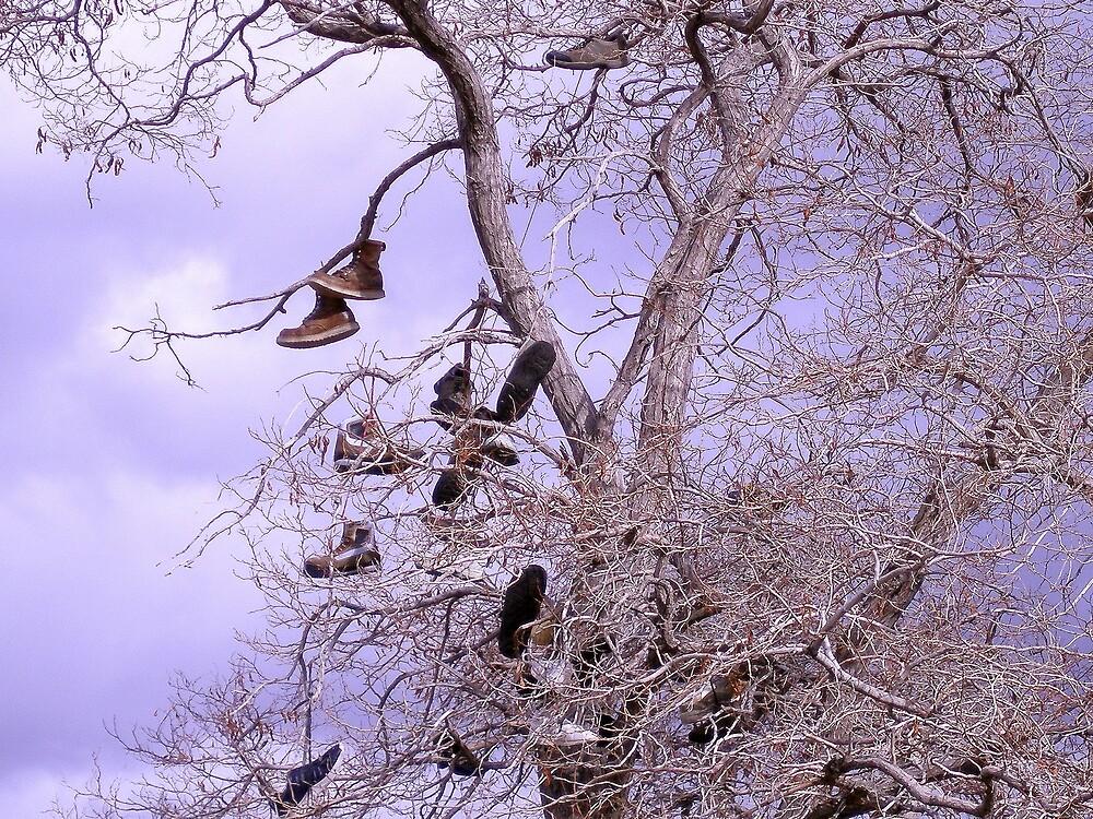 Virginia City - Shoe Tree by SunnyDay