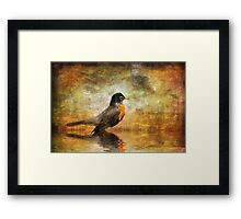 On The Watch For Worms Framed Print