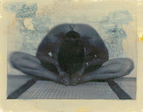 Yoga Essence by Elena Ray
