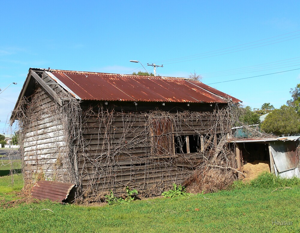 Old shed seen better days by Heabar