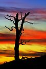 Painted Sunset by David Haviland