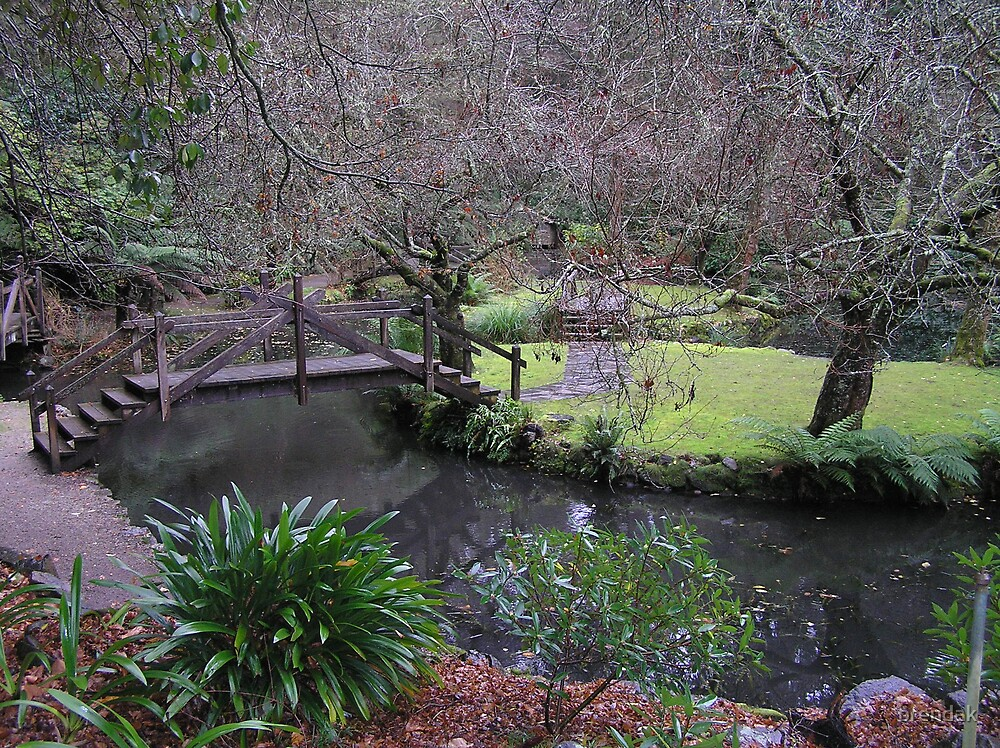 Bridge in Alfred Nicholas Gardens by brendak