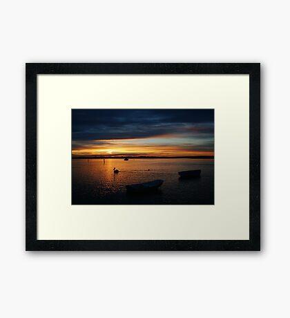 Swan Bay Sunset, Queenscliff Framed Print