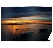 Swan Bay Sunset, Queenscliff Poster